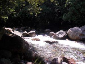 猿ヶ城渓谷|森の駅たるみず