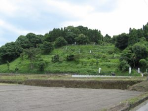 稲荷神社埋没鳥居の全容