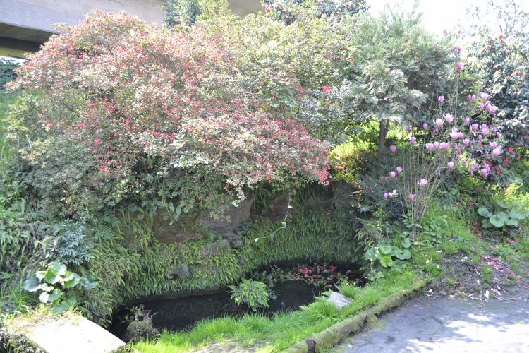 広田家庭園-3