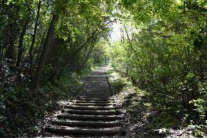 高峠頂上目前の階段、きつい!!されど絶景