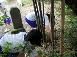 奈良県式下(しきげ)中学校-筍掘り