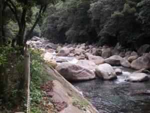 森の駅たるみず猿ヶ城山開き、まさかり海水浴場海開き-6